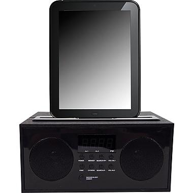 Speaker System with Clock Radio