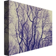 "Trademark Global Ariane Moshayedi ""Branches"" Canvas Art, 22"" x 32"""