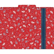 Bandana Decorative File Folders, Letter, 3 Tab