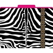 Zebra Decorative File Folders, Letter, 3 Tab