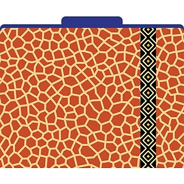 Giraffe Decorative File Folders, Letter, 3 Tab