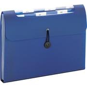 Step Index Organizer, 12-Pocket, Letter, , Poly, Navy