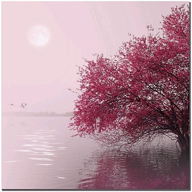 Trademark Global Philippe Sainte Laudy in.Full Moon on the Lakein. Canvas Art, 14in. x 14in.
