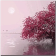 "Trademark Global Philippe Sainte Laudy ""Full Moon on the Lake"" Canvas Art, 18"" x 18"""