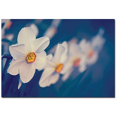 Trademark Global Philippe Sainte Laudy in.Springtime Scentin. Canvas Art, 14in. x 19in.