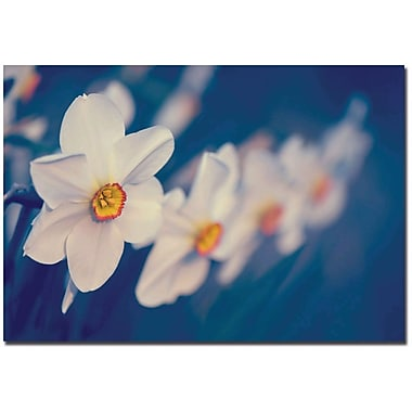 Trademark Global Philippe Sainte Laudy in.Springtime Scentin. Canvas Art, 22in. x 32in.