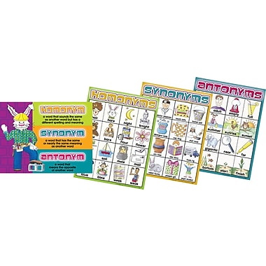 Barker Creek Homonyms, Synonyms and Antonyms Chart Set, 17in. x 22in.