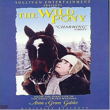 Wild Pony, The