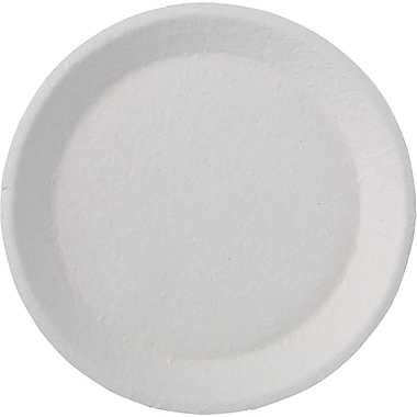 Chinet® Savaday® Dinnerware Plate, 22 3/4in. x 9 1/4in. x 18 3/8in.