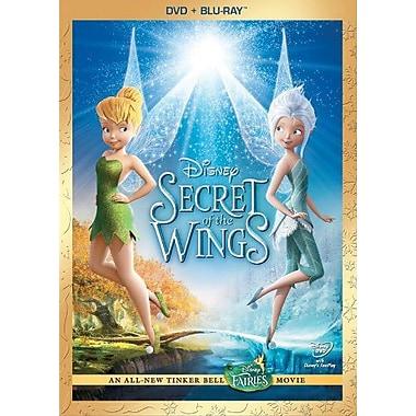 Secret Of The Wings (DVD + Blu-Ray)