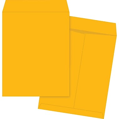 Staples® Envelopes Kraft Catalogue 22