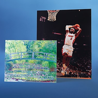 Sports and Art Prints (16in.x20in.)