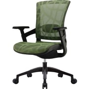 Skate Ergonomic Mesh Office Chair, Adjustable Arm, Herbal Green