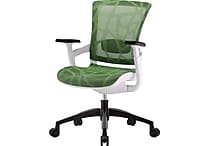 Skate Herbal Green Mesh Ergonomic Chair w/ White Frame