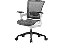 Skate Silver Grey Mesh Ergonomic Chair w/ White Frame