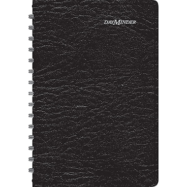 2014/2015 DayMinder® Academic Daily Appointment Book, 4 7/8in. x 8