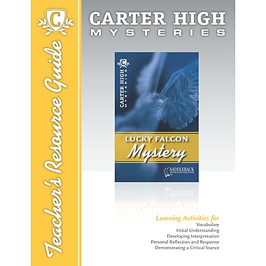 Saddleback Educational Publishing® Lucky Falcon Mystery Teacher's Resource Guide CD; Grades 9-12