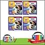First Grade Flinkster Learning Audiobooks Collection-Download
