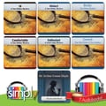 5 Tom Walker Mysteries & Speckled Band Audio Books Bundle - Download