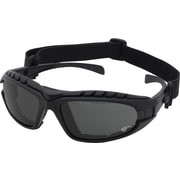Dentec Hornet Foam-lined Black Frame Safety Glass, Grey Lens