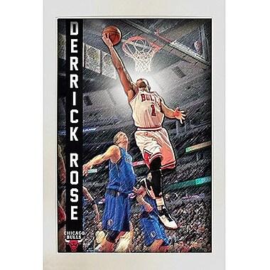 Derrick Rose Pop Out Framed Collage 20x32