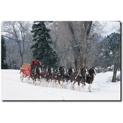 "Trademark Global ""Clydesdales Snowing in Forest"" Canvas Art, 16"" x 24"""