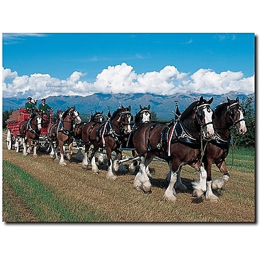 Trademark Global in.Clydesdales in Blue Sky Mountainsin. Canvas Art, 18in. x 24in.