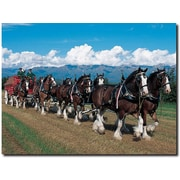 "Trademark Global ""Clydesdales in Blue Sky Mountains"" Canvas Art, 18"" x 24"""