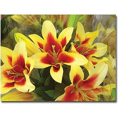 Trademark Global Amy Vangsgard in.Lilliesin. Canvas Art, 35in. x 47in.