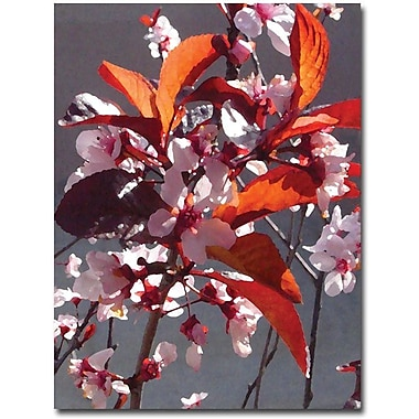 Trademark Global Amy Vangsgard in.Pink Tree Blossomsin. Canvas Art, 47in. x 35in.