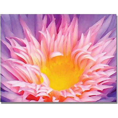 Trademark Global Amy Vangsgard in.Lily Up Closein. Canvas Arts