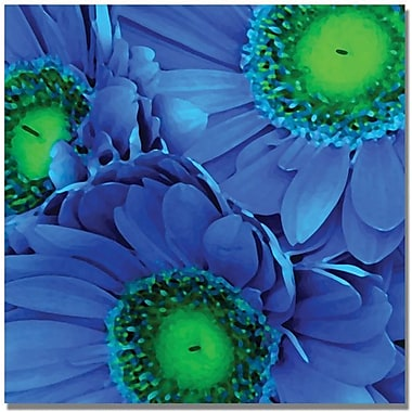 Trademark Global Amy Vangsgard in.Blue Gerber Daisiesin. Canvas Art, 18in. x 18in.