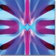 "Trademark Global Amy Vangsgard ""Tree Light Symmetry Blue and Purple"" Canvas Art, 24"" x 24"""