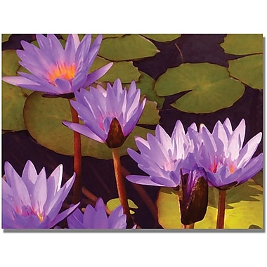 Trademark Global Amy Vangsgard in.Water Liliesin. Canvas Art, 35in. x 47in.