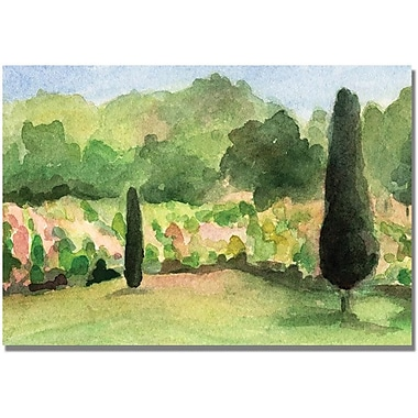 Trademark Global Beverly Brown in.Vineyard in Provance Francein. Canvas Arts