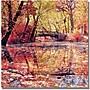 Trademark Global Beata Czyzowska Young Monet's Garden Canvas