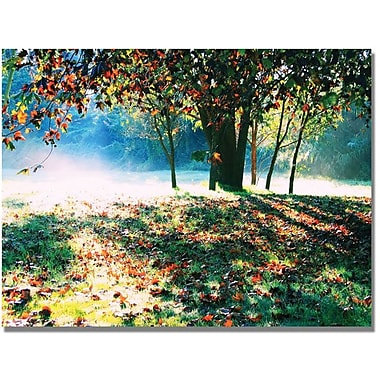Trademark Global Beata Czyzowska Young in.Morning Moodsin. Canvas Art, 30in. x 47in.