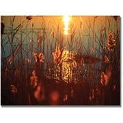 "Trademark Global Beata Czyzowska Young ""Summer Nights"" Canvas Art, 30"" x 47"""