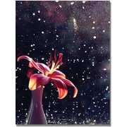 "Trademark Global Beata Czyzowska Young ""Time to Shine"" Canvas Art, 24"" x 18"""