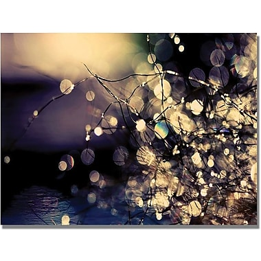 Trademark Global Beata Czyzowska Young in.Fairies in my Gardenin. Canvas Art, 30in. x 47in.