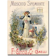 "Trademark Global Cesare Saccaggi ""Moscato Spumante"" Canvas Arts"