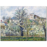 "Trademark Global Camille Pissarro ""The Garden at Pontoise 1877"" Canvas Arts"