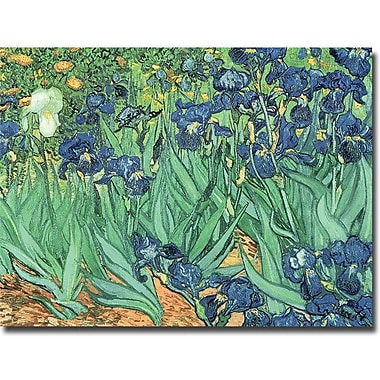 Trademark Global Vincent Van Gogh in.Irises, 1889in. Canvas Arts