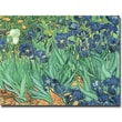 Trademark Global Vincent Van Gogh in.Irises, 1889in. Canvas Art, 26in. x 32in.