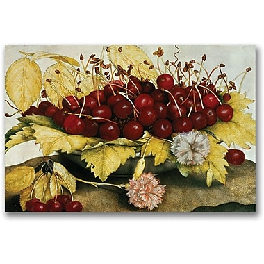 Trademark Global Giovanna Garzoni in.Cherries and Carnationsin. Canvas Art, 16in. x 24in.