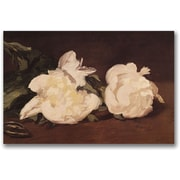 Trademark Global Eduard Manet Branch of White Peonies Canvas Art, 16 x 24