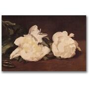 Trademark Global Eduard Manet Branch of White Peonies Canvas Art, 35 x 47