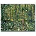 Trademark Global Vincent Van Gogh in.Trees and Undergrowth, 1887in. Canvas Arts