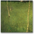 Trademark Global Gustav Klimt in.Farmhouse with Birch Treesin. Canvas Arts