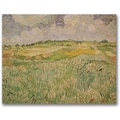 Trademark Global Vincent Van Gogh in.The Plains of Auversin. Canvas Arts